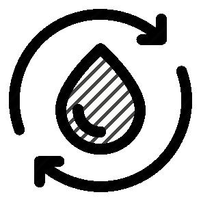 CIRCULATORY SYSTEM - SISTEMA CIRCULATORIO